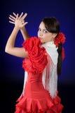 flamenco ισπανικά Στοκ Εικόνες