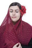Flamenco πορτρέτο Στοκ Φωτογραφίες