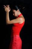 flamenco χορευτών Στοκ φωτογραφίες με δικαίωμα ελεύθερης χρήσης