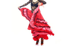 flamenco obrazy royalty free