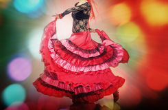 flamenco royaltyfri bild