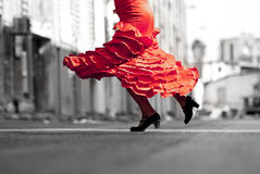 Flamenco Royalty Free Stock Images