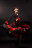 Flamenco Stock Image
