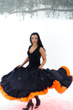 flamenco royaltyfri foto