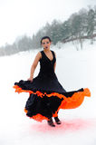 flamenco royaltyfria bilder