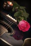 flamenco Arkivfoton