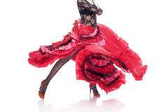 Flamenco Photographie stock libre de droits