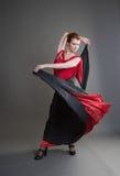 flamenco Fotografia Stock