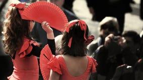 flamenco Obraz Royalty Free