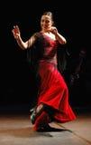 flamenco Fotografering för Bildbyråer
