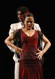 flamenco Royaltyfri Foto
