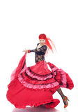 Flamenco Fotografie Stock