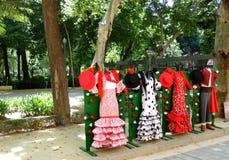 flamenco Fotografia Stock Libera da Diritti