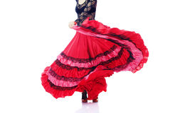 Flamenco Stock Images