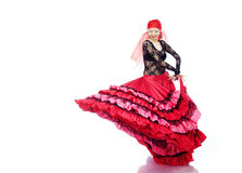 Flamenco Royalty Free Stock Photos