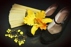 Flamenco accessories Royalty Free Stock Images