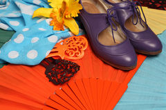 Flamenco accessories Royalty Free Stock Photos