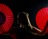 Flamenco artist Royalty Free Stock Images