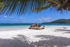 Flamenco beach. Rusted old tank covered in graffiti on famous Flamenco Beach framed by palm tree on beautiful Isla Culebra, Puerto Rico Stock Image