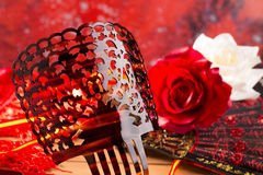 Flamenco comb fan and roses typical from Spain Espana Stock Image