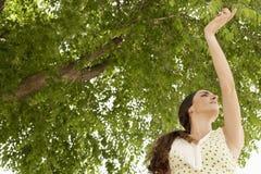 Flamenco da dança da jovem mulher imagem de stock royalty free