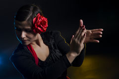 Flamenco dance. Young girl is dancing Stock Photography