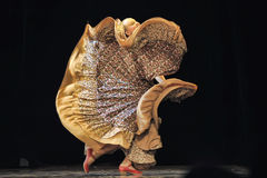 Flamenco dance Stock Image