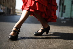 Flamenco Dancer Royalty Free Stock Photography