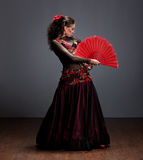 Flamenco dancer in beautiful dress Royalty Free Stock Image