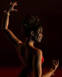 Flamenco Dancer on a dark stage Royalty Free Stock Photos