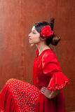 Flamenco dancer Spain woman gipsy with red rose Royalty Free Stock Photos