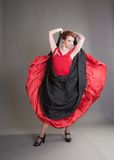 Flamenco Royalty Free Stock Image