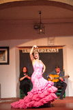 Flamenco dancers and singers performance Stock Images