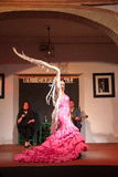 Flamenco dancers and singers performance Royalty Free Stock Photo
