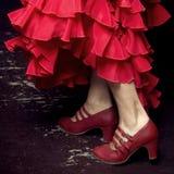 Flamenco dancing. Hispanic woman flamenco dancing, Granada, Spain Royalty Free Stock Photography