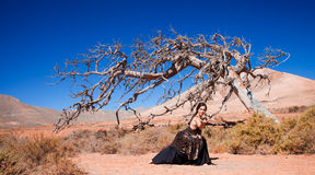 Flamenco and a dead tree Royalty Free Stock Photography