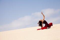 Flamenco in the dunes Royalty Free Stock Photos