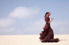 Flamenco in the dunes Stock Photo