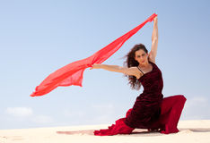 Flamenco in the dunes Royalty Free Stock Image