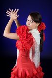 Flamenco español Foto de archivo
