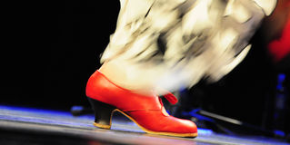 Flamenco fiesta royalty free stock image