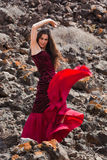 Flamenco in the malpais Stock Photo