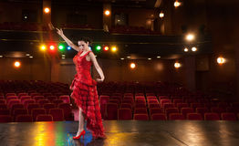 Flamenco Passion. Sexy flamenco dancer performing her dance in a red long dress Stock Images