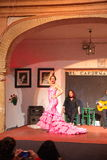 Flamenco piosenkarzów i tancerzy występ Obraz Royalty Free