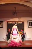 Flamenco piosenkarzów i tancerzy występ Zdjęcie Royalty Free