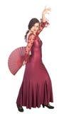 flamenco poza Zdjęcia Royalty Free