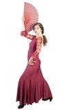 flamenco poza Zdjęcie Stock