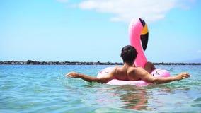 Flamenco rosado en la playa metrajes