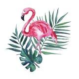 Flamenco rosado y hojas de palma aislados en un fondo blanco Ilustraci?n de la acuarela ilustración del vector