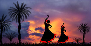 Flamenco before the storm Royalty Free Stock Photos